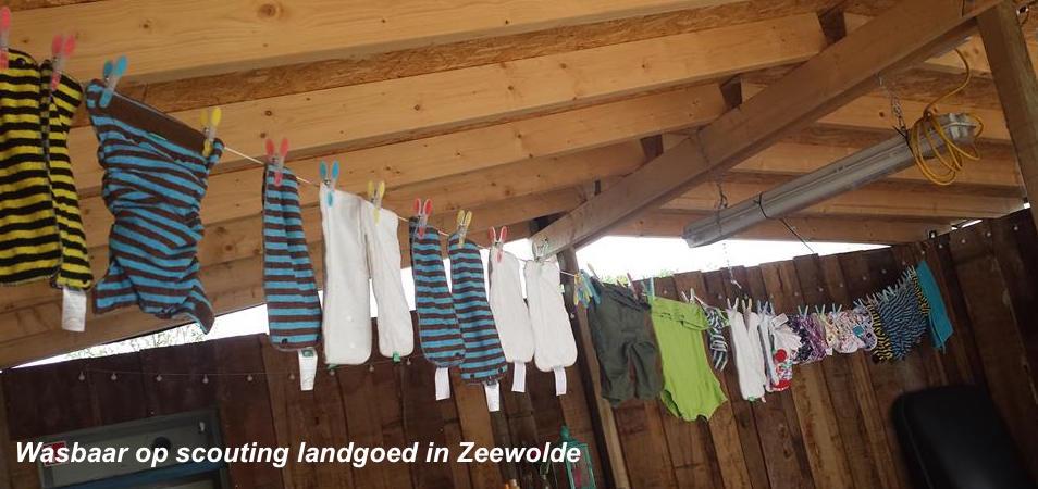 Scouting landgoed in Zeewolde - blog - Billenboetiek