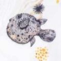 Pufferfish Poofi Billenboetiek wasbare luiers Utrecht
