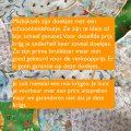 wasbare billendoekjes Misbaksels Billenboetiek (gemaakt door Stichting Hagar in Utrecht)